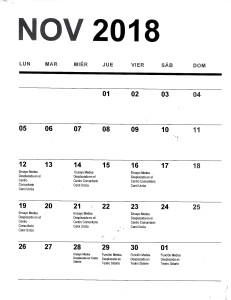 Program Nov 2018